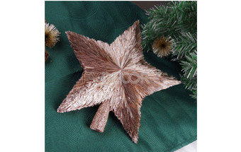 Holiday Shiny Hanging Star Gift